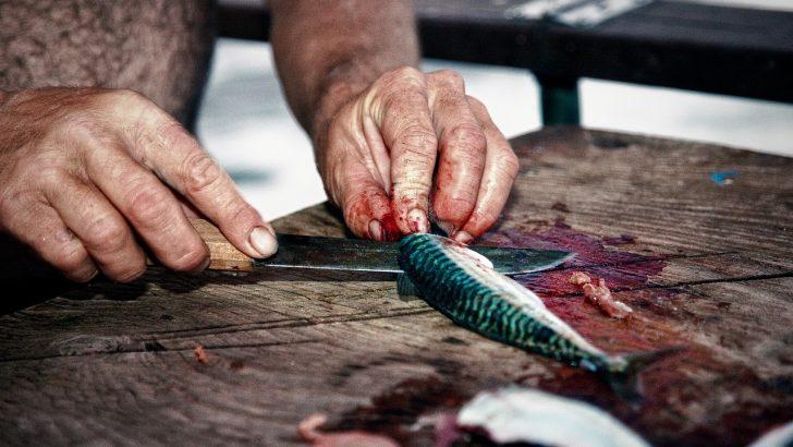 Duhovniki s krvavimi rokami