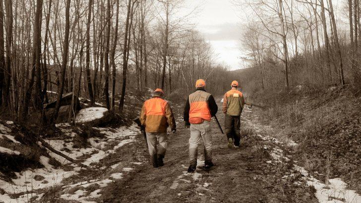 Zakaj lovci pozimi krmijo divjad?